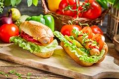 Two fresh homemade hot dog royalty free stock image
