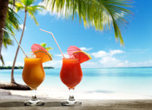 Two fresh juices Stock Image