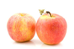 Two fresh juicy apples Stock Images