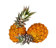 Two fresh juicy pineapples Stock Photo