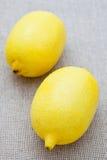 Two fresh lemons Royalty Free Stock Image