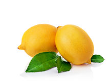 Two fresh lemons. Stock Photo