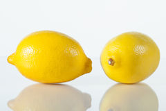 Two fresh lemons Stock Image