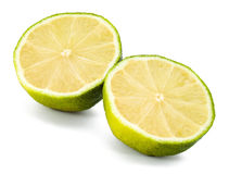Two fresh lime slices Royalty Free Stock Photo