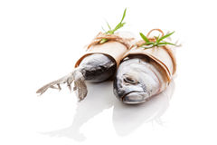 Two fresh mackerel fish on white. Royalty Free Stock Photos