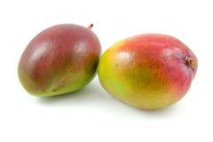 Two fresh mango fruit Royalty Free Stock Photo