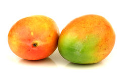 Two fresh mango fruits Royalty Free Stock Photo