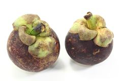 Two fresh Mangosteen Stock Photography