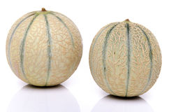 Two fresh melons Royalty Free Stock Photo