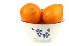 Two fresh minneola's in a decorated bowl Royalty Free Stock Photos