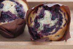 Two fresh muffins Royalty Free Stock Photo