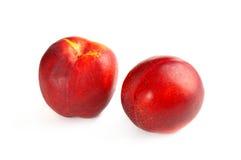 Two fresh nectarines Royalty Free Stock Photos