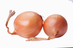 Two fresh onions. Isolated on white background Stock Photo
