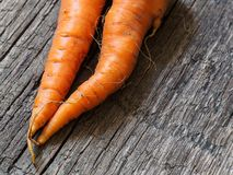 Two fresh orange carrots on an old wooden background.  royalty free stock image