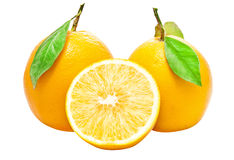Two Fresh Oranges Royalty Free Stock Photo