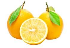 Two Fresh Oranges royalty free illustration