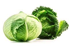 Two fresh organic cabbage heads isolated on white Royalty Free Stock Photography