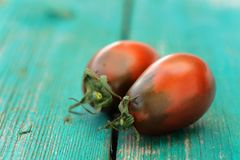 Two fresh organic red and black tomatoes on old wooden turquoise Royalty Free Stock Photo