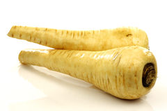 Two fresh parsnip roots stock photos