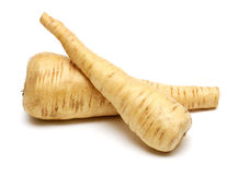 Two fresh parsnip roots on a white background Royalty Free Stock Image