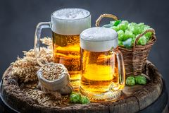 Two fresh pint of beers on wooden barrel. On dark background stock images