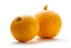 Two fresh pumpkins Stock Photos
