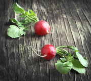 Two fresh radish on wooden background. Toned image Stock Photos