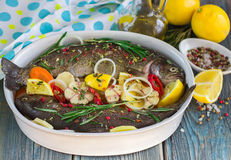Two fresh rainbow trout with lemon, rosemary and spices Stock Image