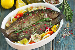 Two fresh rainbow trout with lemon, rosemary and spices Royalty Free Stock Photography