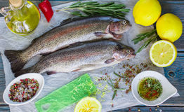 Two fresh rainbow trout with lemon, rosemary and spices. On a wooden table Royalty Free Stock Photo