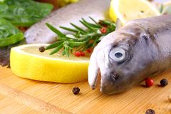Two fresh rainbow trout with spices and lemon. Two fresh rainbow trout with spices on bamboo board, extreme close up Stock Photos