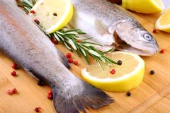 Two fresh rainbow trout with spices, red pepper and lemon. Top view Stock Image