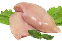 Two fresh raw chicken breasts on white background.  Royalty Free Stock Images