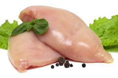 Two fresh raw chicken breasts on white background.  Royalty Free Stock Photography