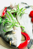 Two fresh raw fishes. Two fresh raw Dorada fish with fresh rosemary herb, garlic, chili peppers and cherry tomatoes on a metal plate Royalty Free Stock Photos