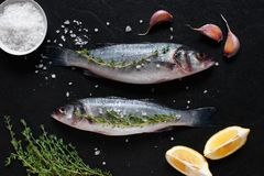Two fresh raw fishes with salt. And ingredients on the black stone table Royalty Free Stock Images
