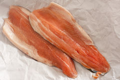 Two fresh raw trout fillets Stock Photography