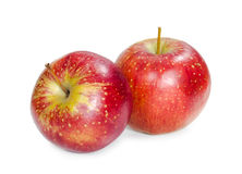Two fresh red apple Royalty Free Stock Photo