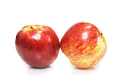 Two fresh red apples Stock Photos