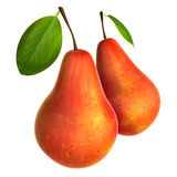 Two Fresh Red Pears. Foods and Dishes Series. Stock Photos