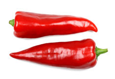 Two fresh red pepper on a white background Stock Photos