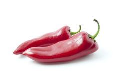 Two fresh red peppers. Two peppers isolated on the white background stock image