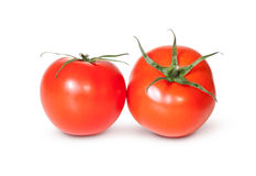 Two Fresh Red Tomato Stock Images