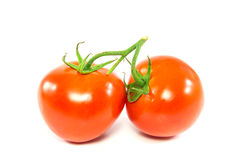 Two fresh red tomato on white background Royalty Free Stock Image