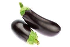 Two fresh ripe eggplant. Royalty Free Stock Photo
