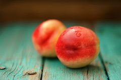 Two fresh ripe whole nectarines with water drops on vintage turq Royalty Free Stock Photos