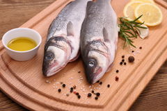 Two fresh sea bass fish on cutting board Royalty Free Stock Photos