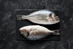 Fresh sea bream or dorado fish on slate background royalty free stock photo