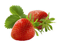 Two fresh strawberry and leaves  on white background Royalty Free Stock Photography