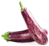 Two fresh striped eggplants Royalty Free Stock Photography